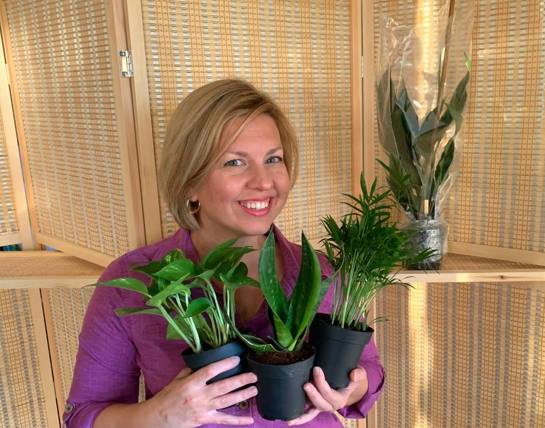 Woman holding three new houseplants.