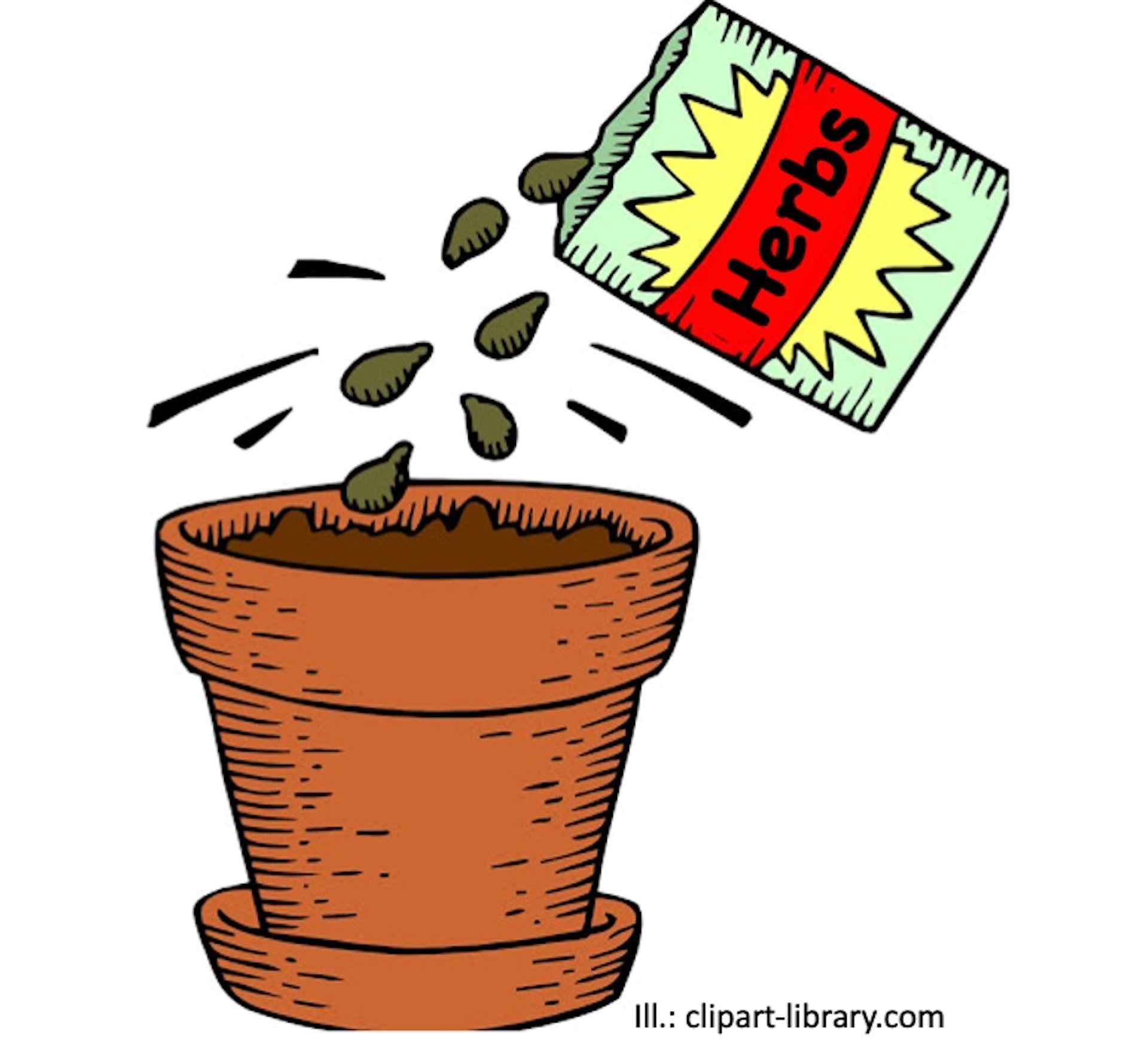 Illustration showing a seed packet labelled herbes pouring seeds into a pot.