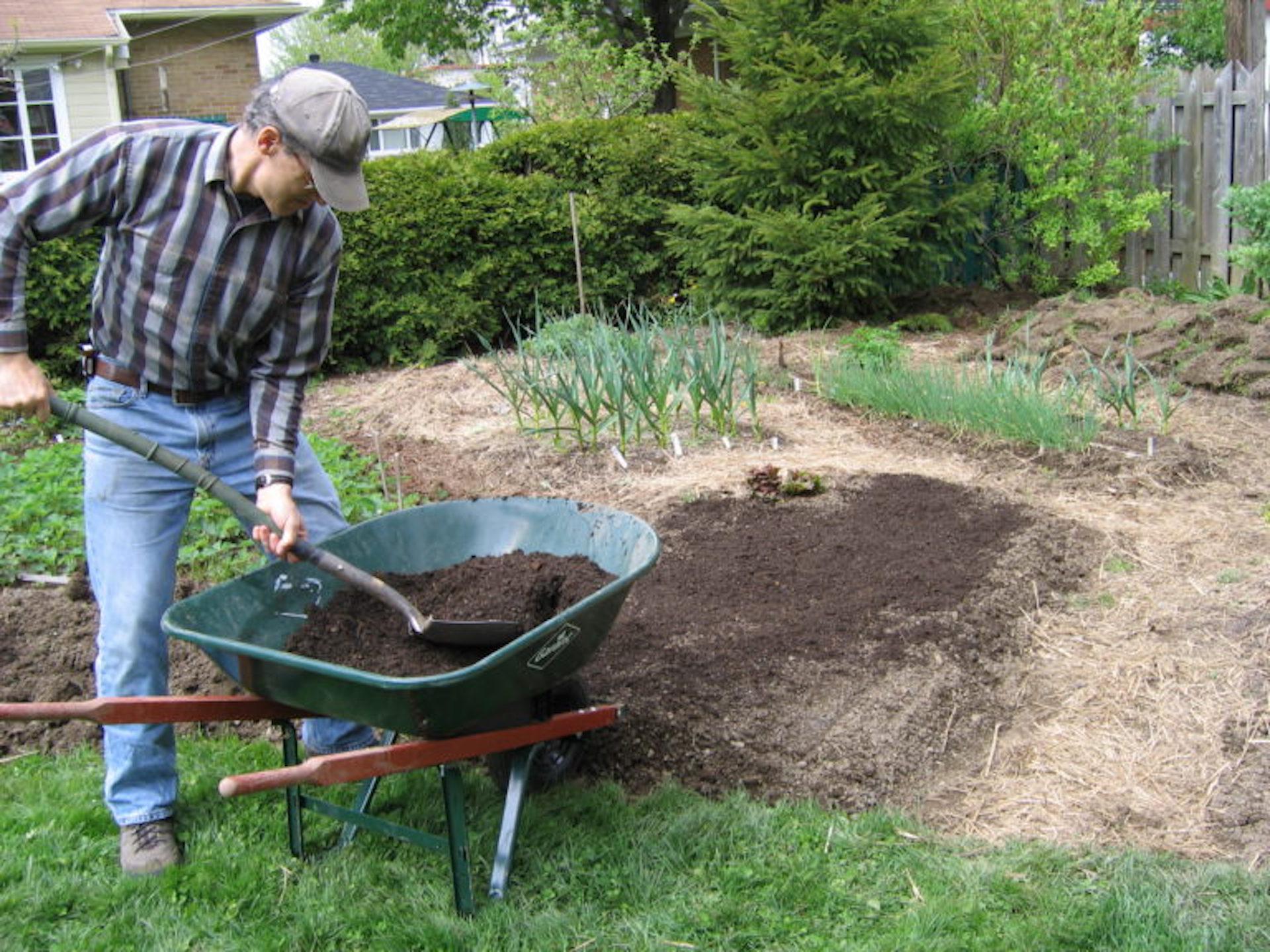Man shoveling compost from a wheelbarrow.