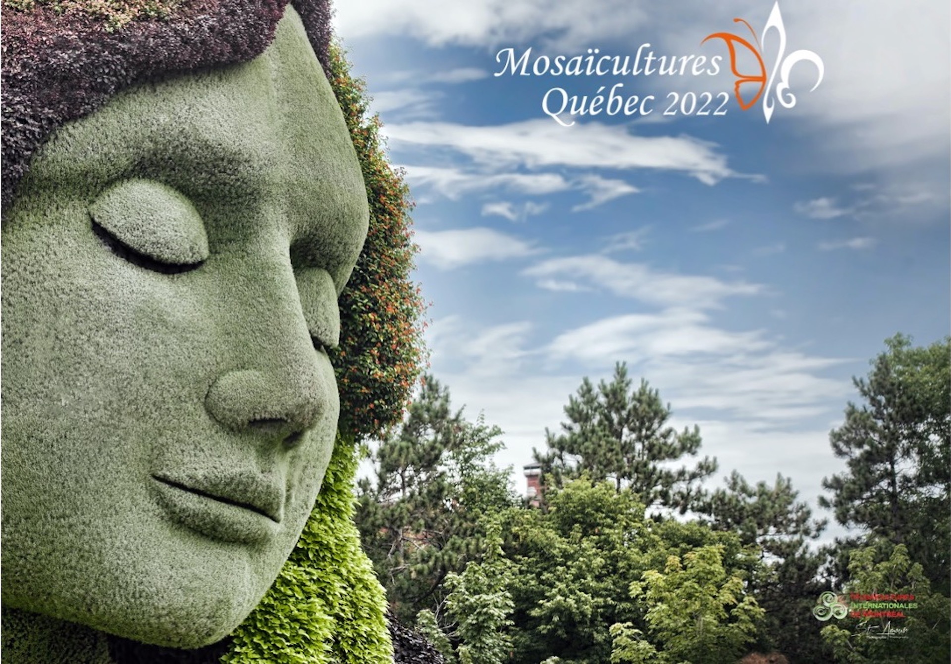 Woman's face done in mosaiculture
